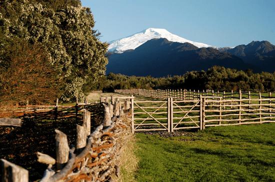 chile farmland investment